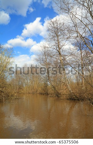 spring wood in water of the flood - stock photo