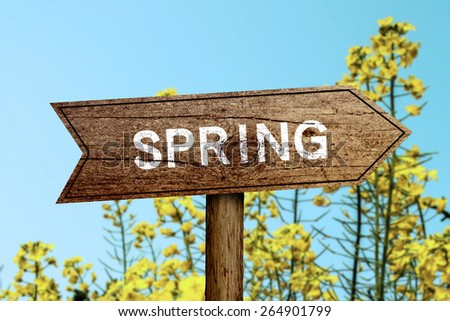 Spring wooden roadsign with beautiful natural background. - stock photo