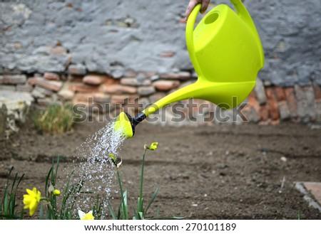 Spring work in the garden - stock photo