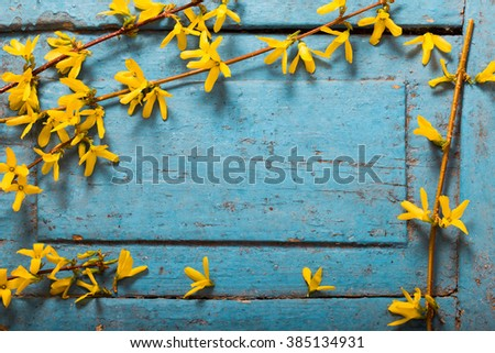 Spring yellow flowers on old blue wooden background - stock photo
