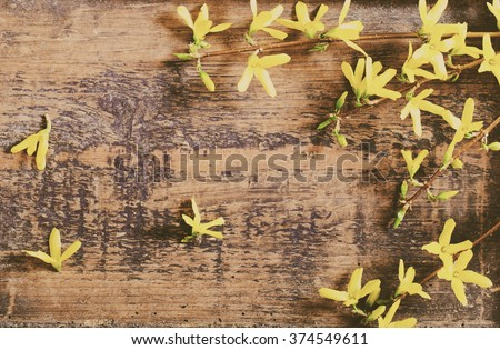 Spring yellow flowers on old wooden background - stock photo