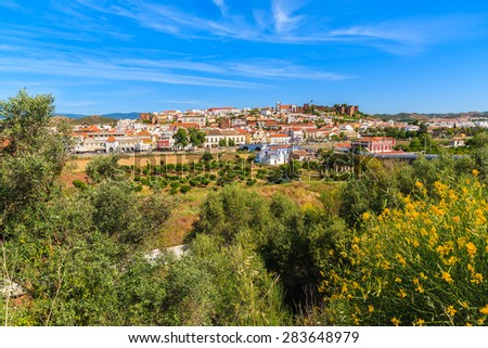 Spring yellow flowers with view of Silves town built on green hill, Algarve region, Portugal - stock photo