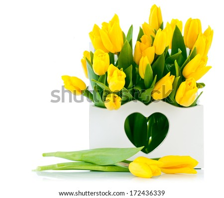 spring yellow tulips in wooden basket isolated on white backgrounde - stock photo