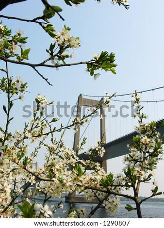 Springtime Bridge - stock photo