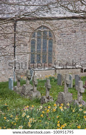 Springtime flora amongst the ancient headstones in the medieval churchyard of St Morwenna and St John the Baptist parish church at Morwenstow in North Cornwall UK - stock photo
