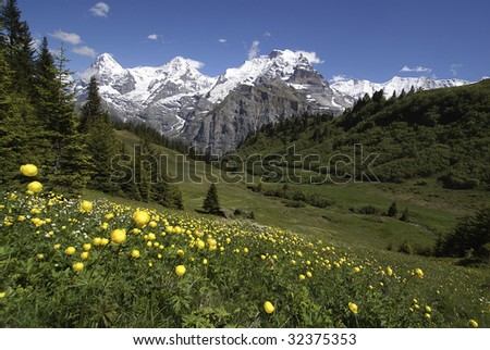 springtime on the alps, Eiger, Moench and Jungfrau