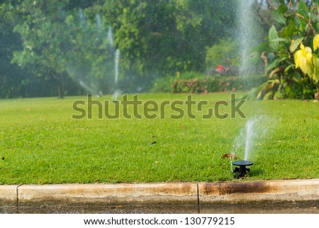 Sprinkle water - stock photo