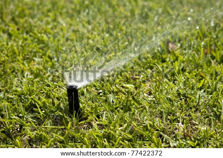 sprinkler head dispersing water on grass - stock photo