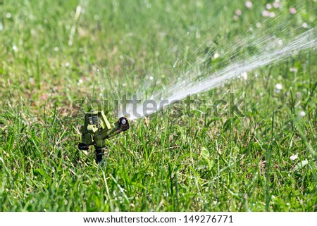 Sprinkler head spraying water on grass
