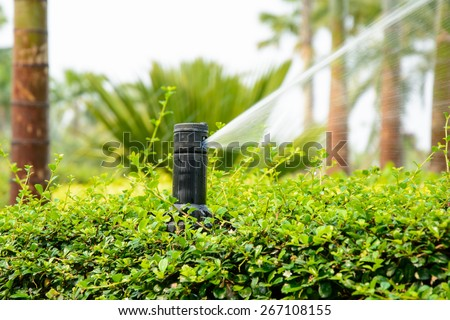 Sprinkler in park ,Garden irrigation system watering lawn - stock photo