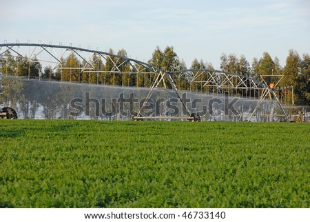 Sprinkler irrigation for watering cultivated field - stock photo