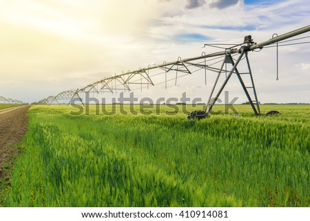 Sprinkler irrigation system in green wheat field - stock photo