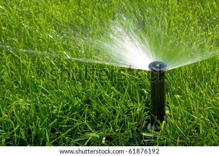 sprinkler of automatic watering