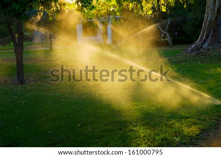 sprinkler of automatic watering grass and sunlit by sunset sun - stock photo