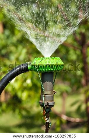 Sprinkler spraying water over green grass in the garden - stock photo