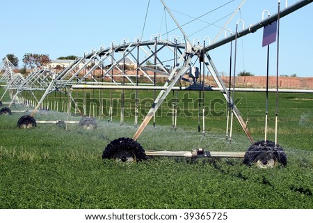 Sprinkler system watering crops on a farmland - stock photo