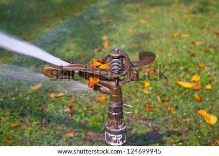 Sprinkler watering in garden - stock photo