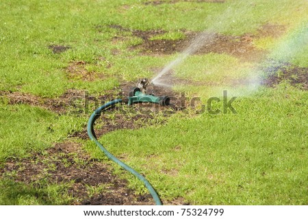 Sprinkler watering lawn with patches of new seeding - stock photo