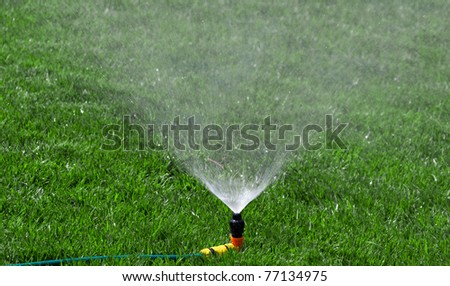 sprinkler watering the green grass on a sunny summer day - stock photo