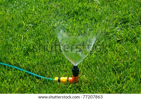 sprinkler watering the green grass on a sunny summer day