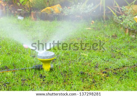 sprinkler watering the lawn in an urban garden