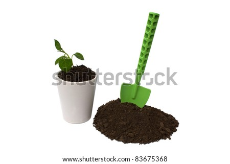 Sprout and shovel isolated on a white background - stock photo