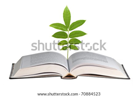 Sprout growing from book
