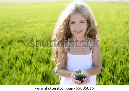 sprout plant growing from little girl hands outdoor rice field - stock photo