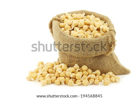 sprouted chick peas in a burlap bag on a white background - stock photo