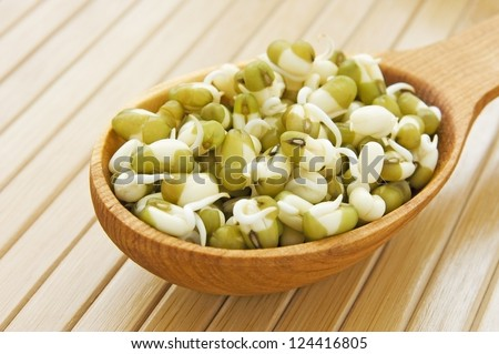 Sprouted mung beans in wooden spoon on bamboo close up