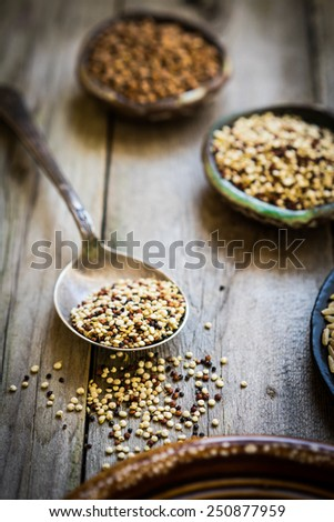 Sprouted red and white quinoa - stock photo