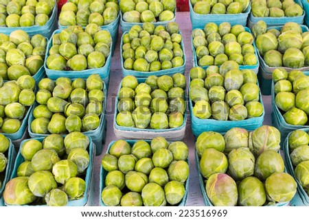 Sprouts at a Market - stock photo