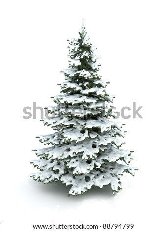 Spruce tree (Christmas tree) covered with snow.Isolated on a white background ,Part of a winter tree series 300 D.P.I image