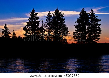Spruce tree silhouettes in the warm glow of sunset. - stock photo
