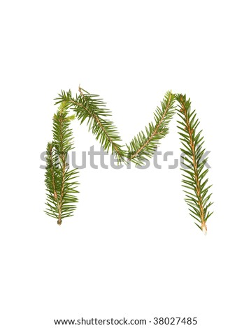 Spruce twigs forming the letter 'M' isolated on white - stock photo