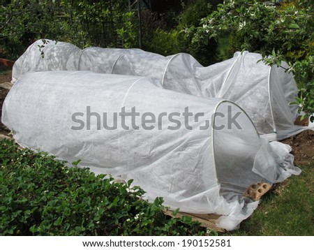 Spunbond hotbeds for vegetable seedlings against night frost in the spring garden - stock photo