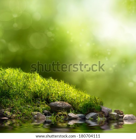 Square background with grass, stones and water in the foreground over out of focus trees and sunlight - stock photo