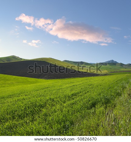 square composition for spring landscape of green grass and plowed land at the twilight - stock photo