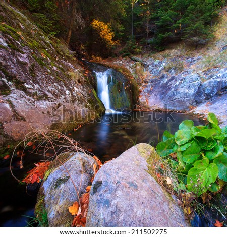 square landscape of small waterfall in autumn forest  - stock photo