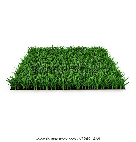Square of green grass field on white. 3D illustration