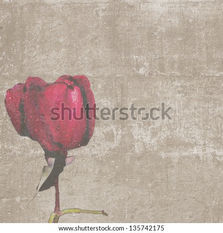 Square vintage texture with red rose bud - stock photo