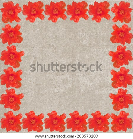 Square vintage textured frame with red anemones  - stock photo