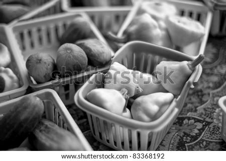 squash and cucumbers - stock photo