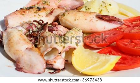Squids Calamari - stock photo