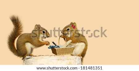 Squirrels in love, ready for a picnic.  Part of a fun series. - stock photo