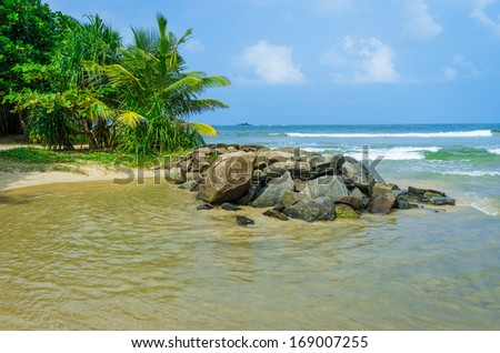 Sri Lanka beach. Bentota. - stock photo