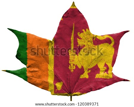 Sri Lanka flag painted on dried autumn leaf - stock photo