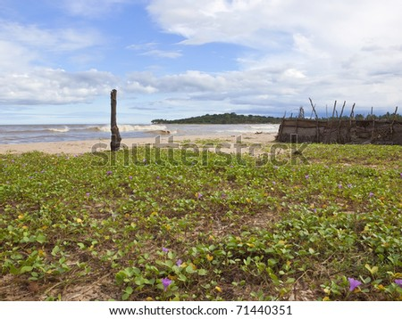 sri lankan landscape with surf breaking on the beach at arugam bay