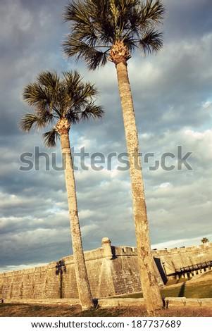 St. Augustine palms and Castillo de San Marcos   - stock photo
