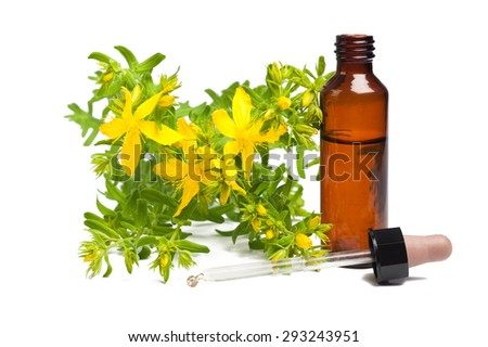 St. John's wort isolated with dropper and bottle - stock photo